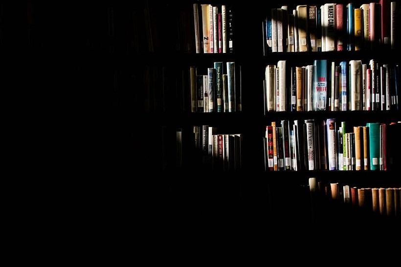 sunlight shelves books library
