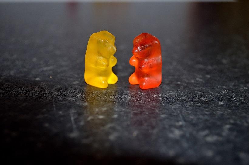 rubber bears