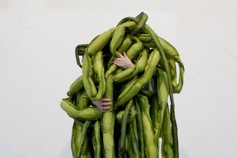 Un encuentro vegetal